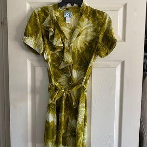 Anthropologie 100% Silk Belted Dress Size 6